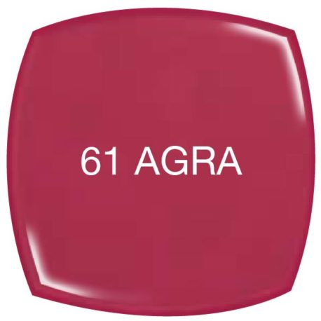 Vip-Gel-Polish_61 AGRA