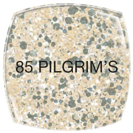Vip-Gel-Polish_85 PILGRIM'S